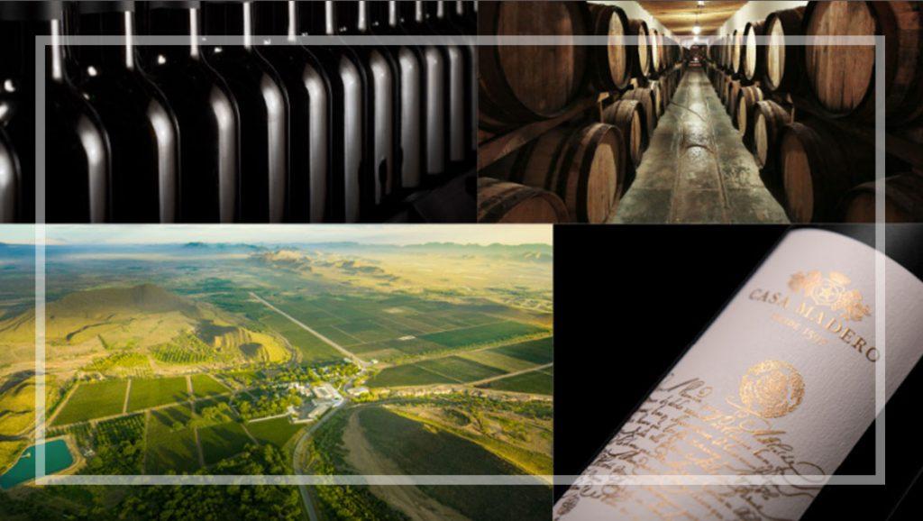 Historia del vino en Coahuila