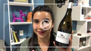 Ad Libitum es un vino hecho de uva Tempranillo Blanco