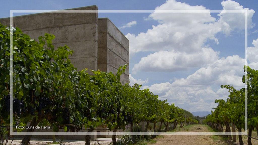Vinos de Guanajuato